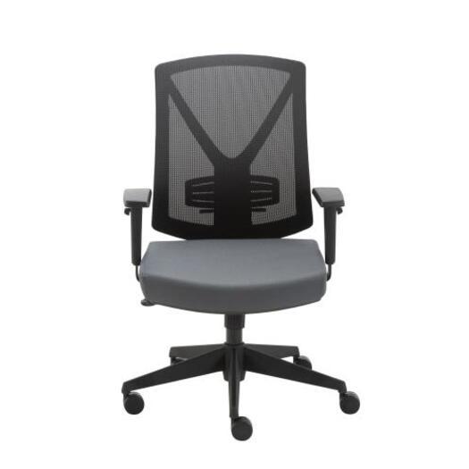 Miro Ergonomic Mesh Office Chair