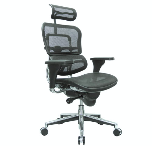 E-Human Mesh Executive Chair With Headrest